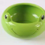 frog pot big 1 14.1