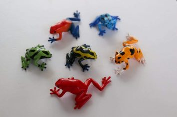 poison dart frogs 14.1